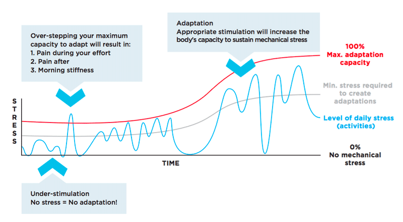 runners overload their capacity graph